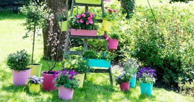 Decorațiunile de grădină – micile accente care să îți facă vara mai veselă
