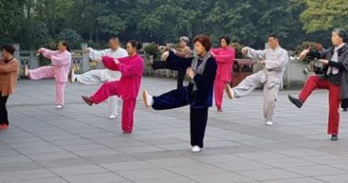 Tai Ji Quan, arta marțială chinezească cu efecte terapeutice